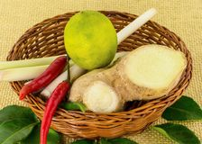 Wicker basket with ingredients spicy soup Tom Yam seasoning lemongrass chili lime fruit Stock Image