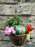 A wicker basket with inside flowers , fruit and rosemary hanging Royalty Free Stock Images