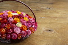 Wicker basket with multicolored flowers Royalty Free Stock Photos