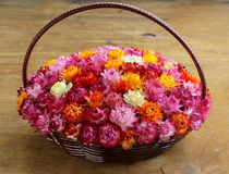 Wicker basket with multicolored flowers Stock Photos