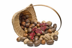 Wicker basket with nuts. Royalty Free Stock Image
