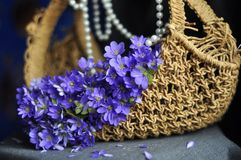 Wicker basket with purple flowers of snowdrops and beads royalty free stock photos