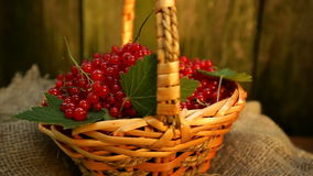 Wicker basket with red currant stock footage