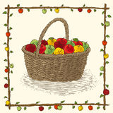 Wicker Basket with Ripe Apples. In Floral Frame on a Beige Background Royalty Free Stock Images