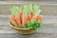 Wicker basket with ripe carrots on wooden. Background Stock Photos