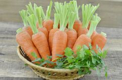 Wicker basket with ripe carrots on wooden, closeup. Wicker basket with ripe carrots on wooden table Stock Photos