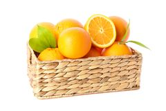 Wicker basket with ripe oranges isolated on white background. Citrus food stock photography