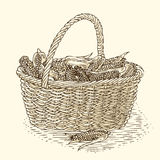 Wicker Basket with Ripe Yellow Corn. Engraving Wicker Basket with Ripe Yellow Corn. Isolated on a Beige Background Royalty Free Stock Photography