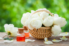 Wicker basket with roses bunch and bottles of oil. Royalty Free Stock Photos