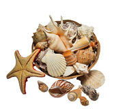 Wicker basket with sea shells. Royalty Free Stock Photos