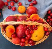 Wicker basket with seasonal summer fruits and berries. Ripe juicy nectarines apricots sweet cherries scattered on blue. Cotton towel. Vitamins healthy balanced royalty free stock images
