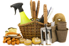 Wicker basket with seeds, gloves, garden rakes. Peat pots, gladioli bulbs and sprayer on a white background Stock Images