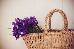 Wicker basket with spring flowers Stock Images