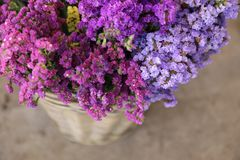 In a wicker basket variety of limonium sinuatum or statice salem flowers in pink, lilac, violet colors in the garden shop. Horizontal. Close-up. Top view Royalty Free Stock Photos