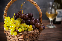 Wicker basket with various grapes: red, white and black berries on the dark wooden table with bottle and glass of white wine in th. E background.. Selective Royalty Free Stock Images