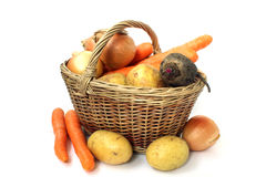 Wicker basket of various vegetables Stock Images