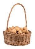 Wicker basket with walnuts Royalty Free Stock Photos