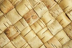 Wicker birch texture Stock Photo