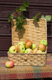Wicker boxes with apples Stock Photo
