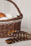 Wicker brown basket with eggs and feathers in cozy background Stock Images