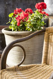 Wicker chair with red flowers Royalty Free Stock Photos