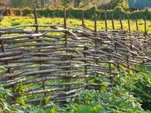 Wicker fence of curved wooden twigs Stock Photo