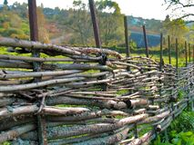 Wicker fence of curved wooden twigs Stock Image