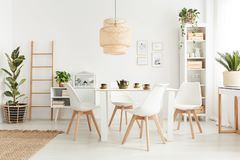 Wicker lampshade above table. Big wicker lampshade hanging above table in white dining room interior with potted plants and plastic chairs stock photo