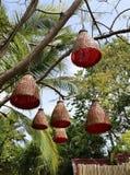 Wicker lights on the tree Royalty Free Stock Photo