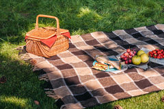Wicker picnic basket and fresh fruits with sandwiches on plaid. Outdoors royalty free stock images