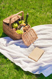 Wicker picnic basket with fruits and bottle of wine, cheese, croissants and book with blank cover Stock Image