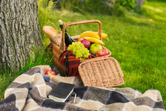 Wicker picnic basket with fruits and bottle of wine, notebook and pencil on plaid Stock Image