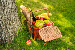 Wicker picnic basket with fruits, wine bottle, baguette and plaid on green grass Stock Images