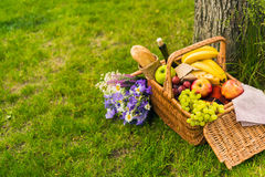Wicker picnic basket with fruits and wine, cheese, baguette and bouquet of beautiful flowers Stock Photography