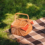 Wicker picnic basket and plaid on green grass Stock Image