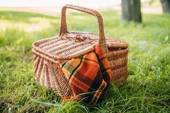 Wicker picnic basket with plaid on green grass in park Royalty Free Stock Photo