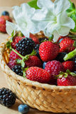 Wicker plate with assortment berries blueberries, strawberries, raspberries and blackberries. Rustic style. Stock Image