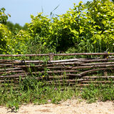 Wicker rustic fence Royalty Free Stock Images