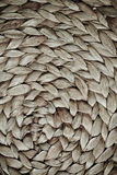 Wicker texture. Background is old stock photography