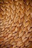 Wicker texture Stock Photography