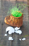 Wicker toy clog and eggshell Stock Image