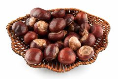 Wicker tray with wet chestnuts on white background. Water drops royalty free stock photos