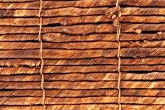 Wicker tree bark Royalty Free Stock Photo