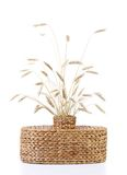 Wicker vase with ears of wheat Royalty Free Stock Photography