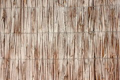 Wicker wall of reeds Royalty Free Stock Images