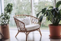 Summer recreation area. Wicker furniture. Wicker white armchair surrounded by green flowers Stock Photo