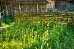Wicker wooden sheds and an old fence. Among the greenery, among the foreskin and thin flowers in the sunlight. Nobody Stock Photo