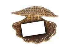 wickerwork κοχυλιών θάλασσας στοκ εικόνες με δικαίωμα ελεύθερης χρήσης
