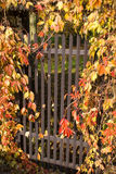 Wicket. Covered with colorful, autumn leafs Royalty Free Stock Photo