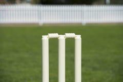 Wicket del cricket Fotografie Stock